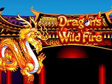 Игровой автомат Dragon's Wild Fire в казино Admiral
